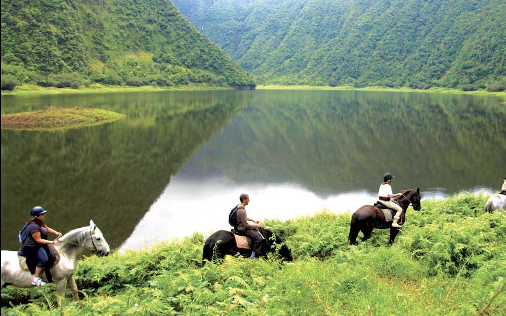 घोड़े की सवारी