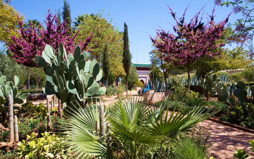 Le Jardin des 1001 saveurs