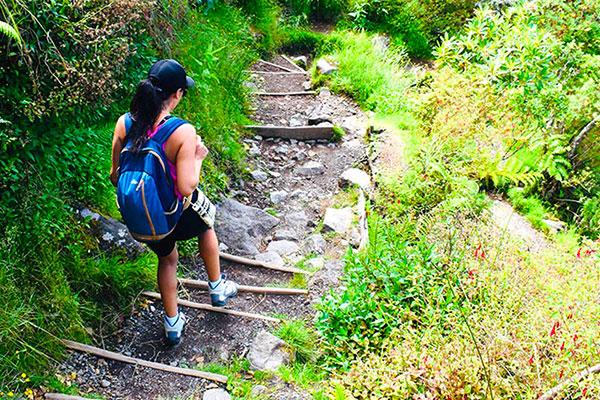 लंबी पैदल यात्रा
