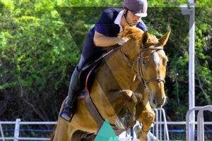 Hermitage Horse Club